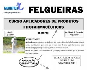 Felgueiras-page-002