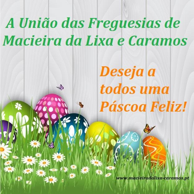 ovos-de-pascoa-com-borboletas-fundo_1048-1175